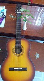Đàn guitar Classic Vitoria C32