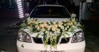 Xe hoa đẹp - C012