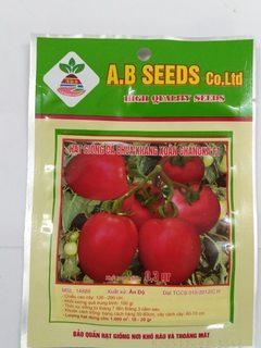 Hạt giống cà chua kháng xoăn Chanoka F1