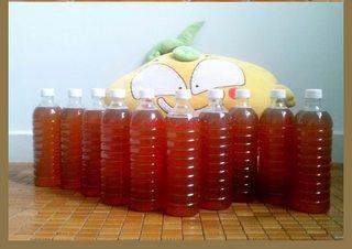 Mật ong nguyên chất Daklak, BMT