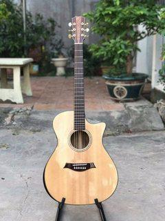 Guitar Acoustic AC3040 (Điệp trung kỹ)