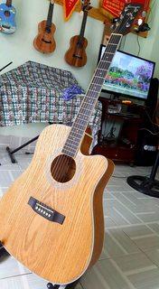 Guitar Acoustic Semcon 4104-V1